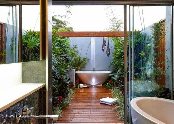 Bí quyết chọn cây cảnh trong nhà tắm
